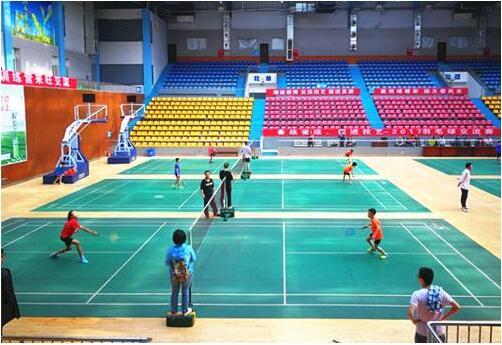 羽毛球活动中心木地板