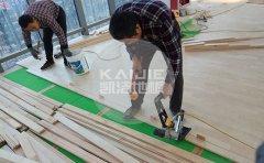 体育馆木地板如何防虫、防腐、防潮