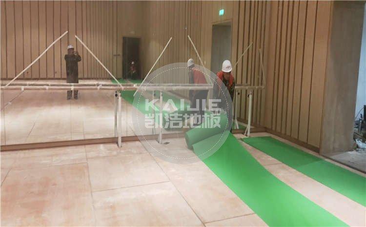 河北廊坊大剧院舞台long8龙8国际项目案例