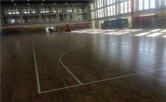 体育馆木地板发现有白蚁怎么办-体育馆木地板